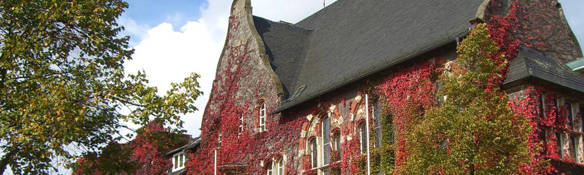 das mit Weinranken bewachsene historische Kreishaus