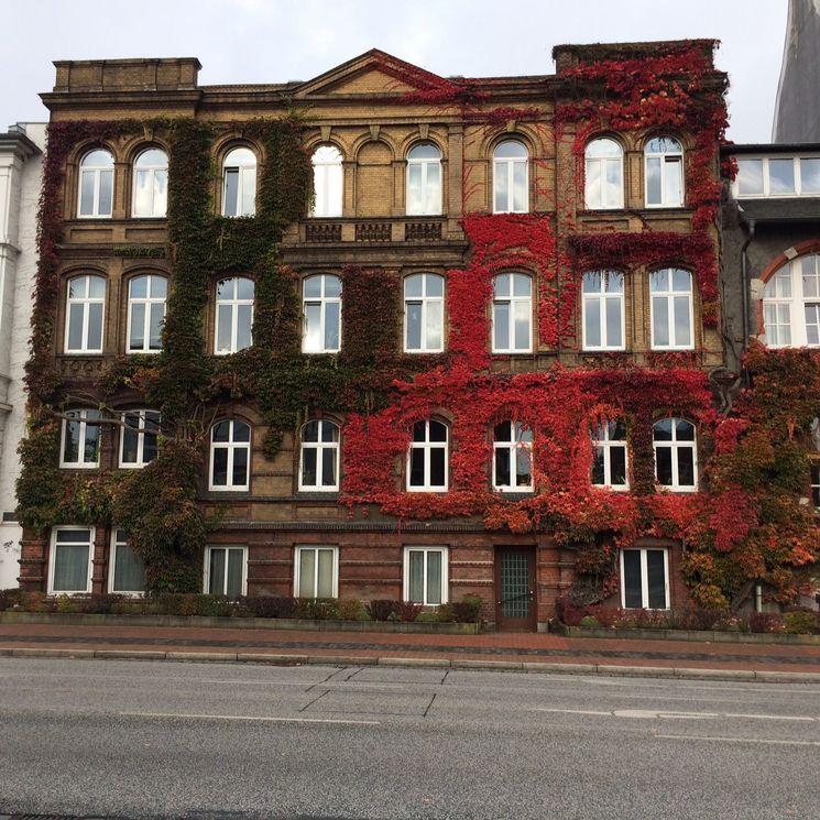 Südfassade ehemaliges Bollhardt'sches Gebäude